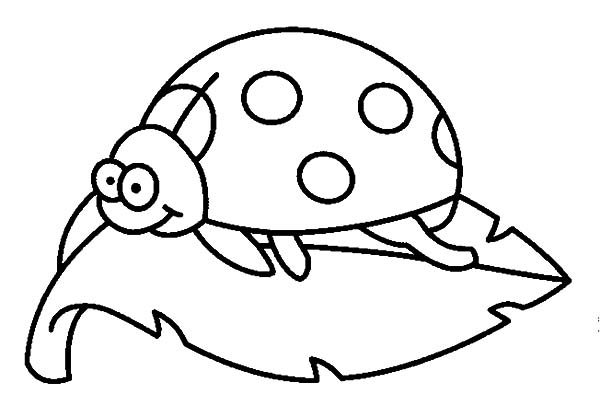 Beetle, : Beetle Standing on a Leaf Coloring Pages