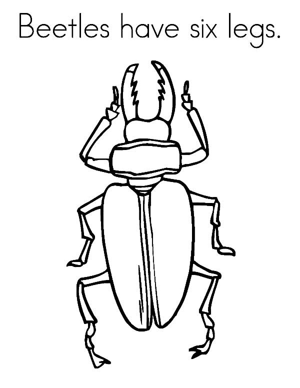 Beetle, : Beetles Have Six Legs Coloring Pages