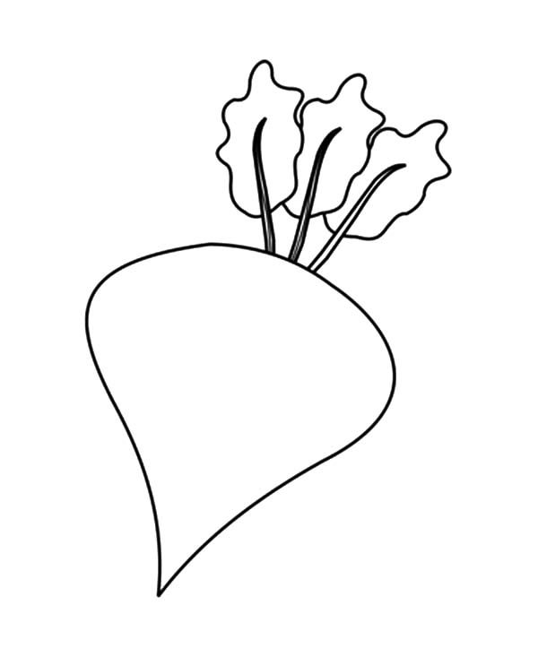 Beets, : Beets Outline Coloring Pages