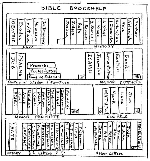 Bookshelf, : Bible Bookshelf Coloring Pages