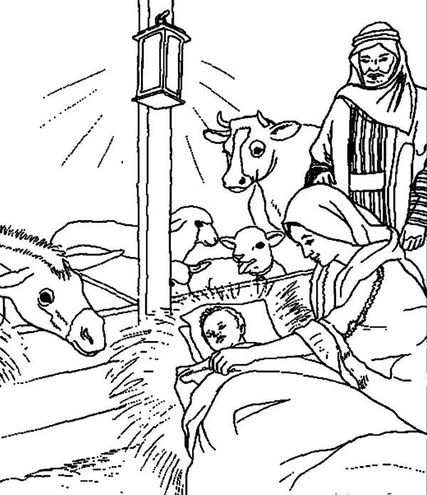 Bible Christmas Story, : Bible Christmas Story Animals Welcoming the Birth of Savior for the World Coloring Pages