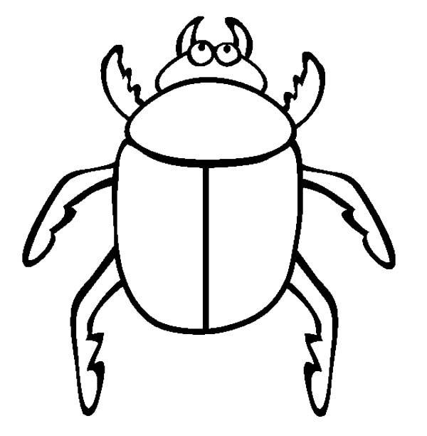 Beetle, : Big Eyed Beetle Coloring Pages