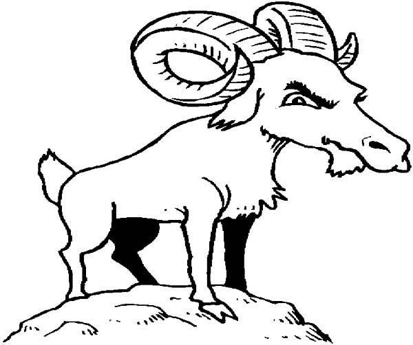 Billy the Goat, : Billy the Goat Thinking Hard Coloring Pages