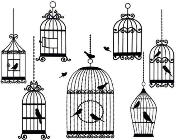 Bird Cage, : Bird Cage Coloring Pages