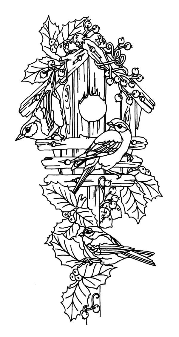 free bird house coloring pages | Bird Couple Guarding Their Bird House Coloring Pages: Bird ...
