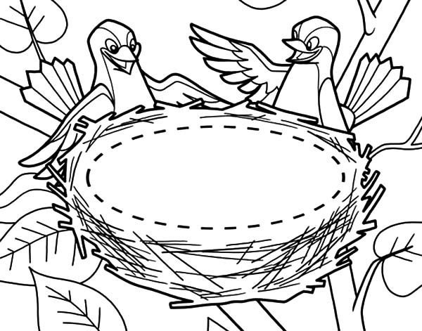 Bird Nest, : Bird Couple and Their New Bird Nest Coloring Pages 2