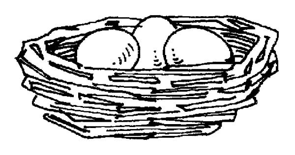 Bird Nest, : Bird Eggs in Bird Nest Coloring Pages