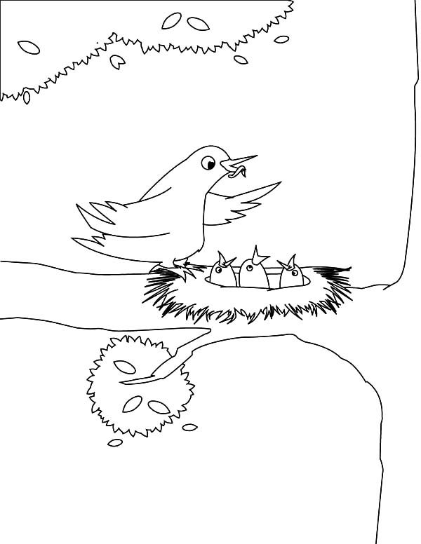 Bird Nest, : Bird Family Live in Bird Nest Coloring Pages