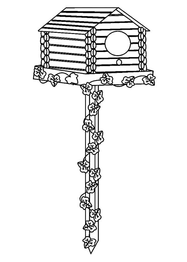 Bird House, : Bird House Picture Coloring Pages