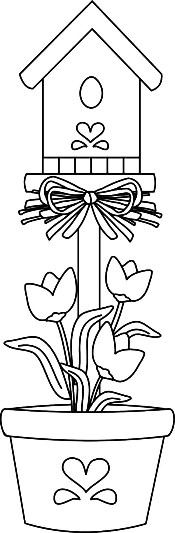 Bird House, : Bird House Planted in Pot Coloring Pages