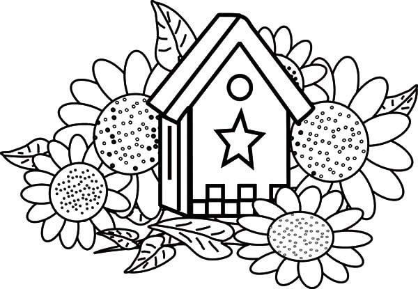 Bird House, : Bird House and Sunflowers Coloring Pages