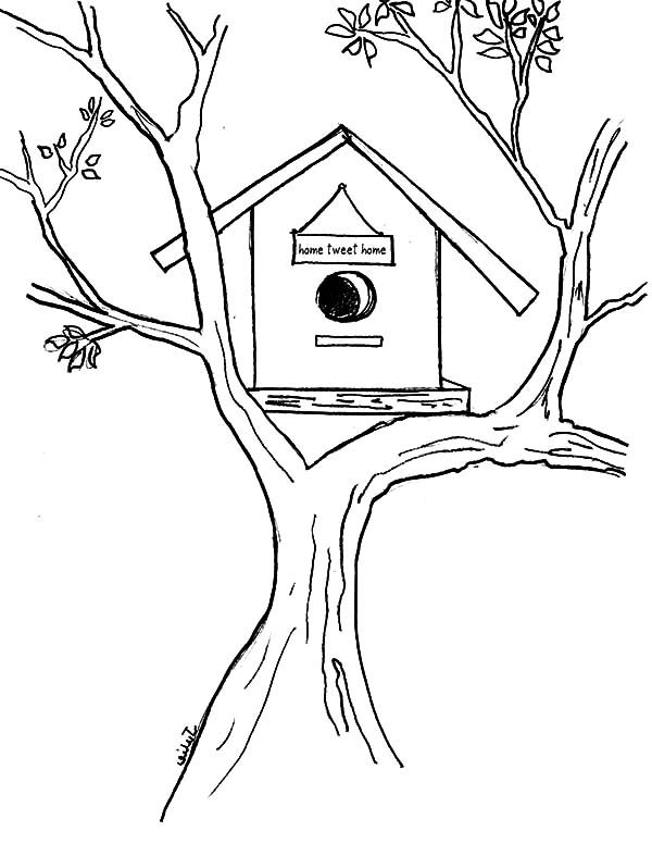 Bird House, : Bird House on aTree Coloring Pages