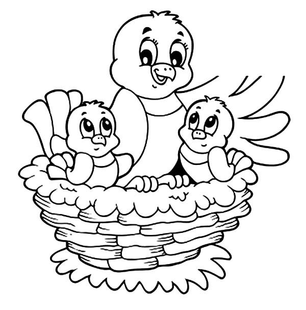 Bird Nest, : Bird and Her Baby Live in Bird Nest Coloring Pages