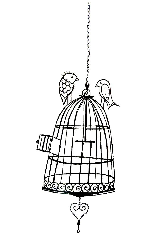 bird cage coloring pages - photo#13