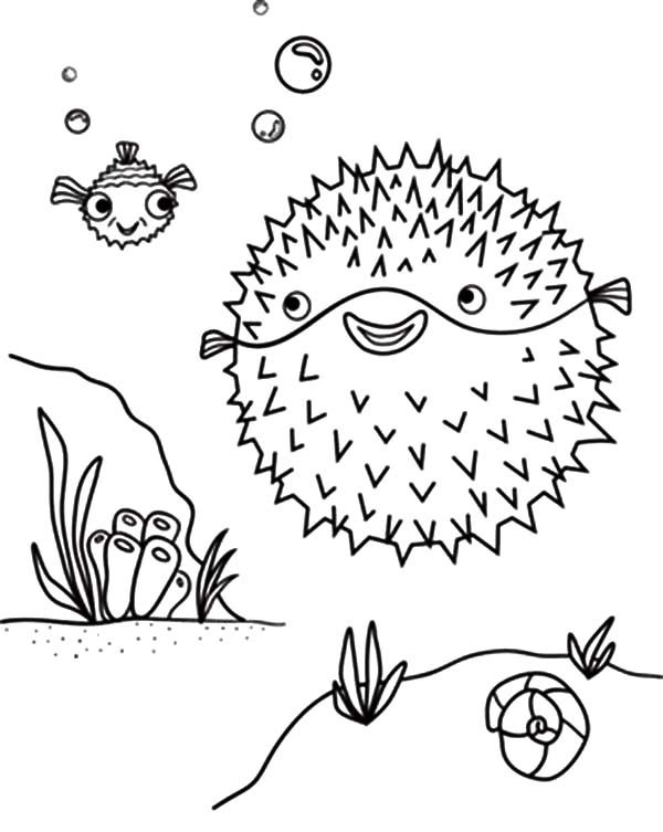 Blowfish, : Blowfish and Her Baby Coloring Pages
