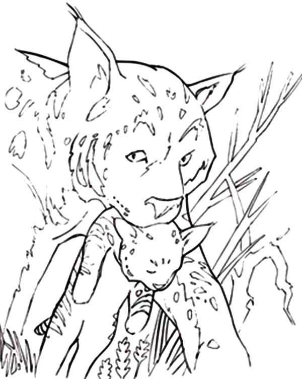 Bobcat, : Bobcat Moved His Children Coloring Pages