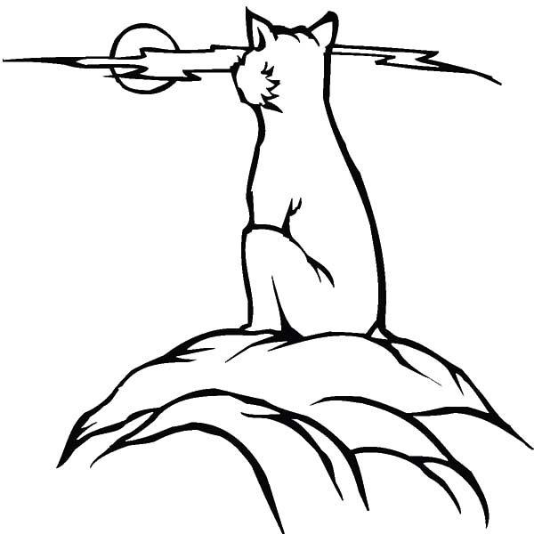 Bobcat, : Bobcat Watching Full Moon Coloring Pages