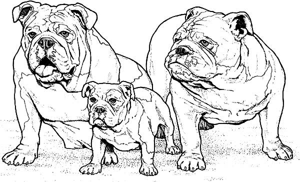 baby boxers coloring pages - photo #39