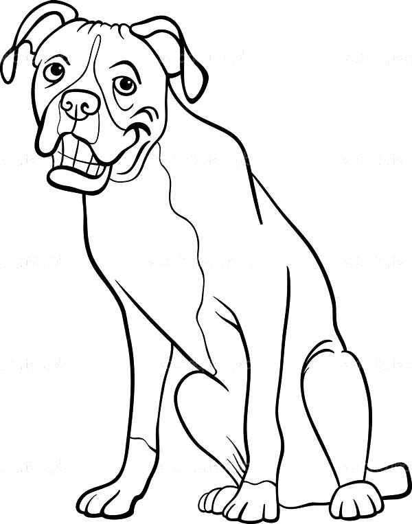 boxer dog cartoon for coloring book | Best Place to Color