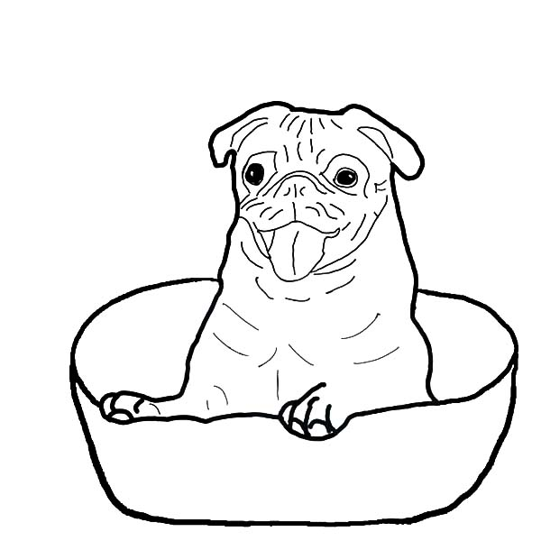 Boxer free coloring pages for Printable boxer dog coloring pages