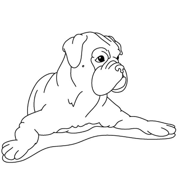 Boxer Dog, : Boxer Dog Spread His Hand Coloring Pages