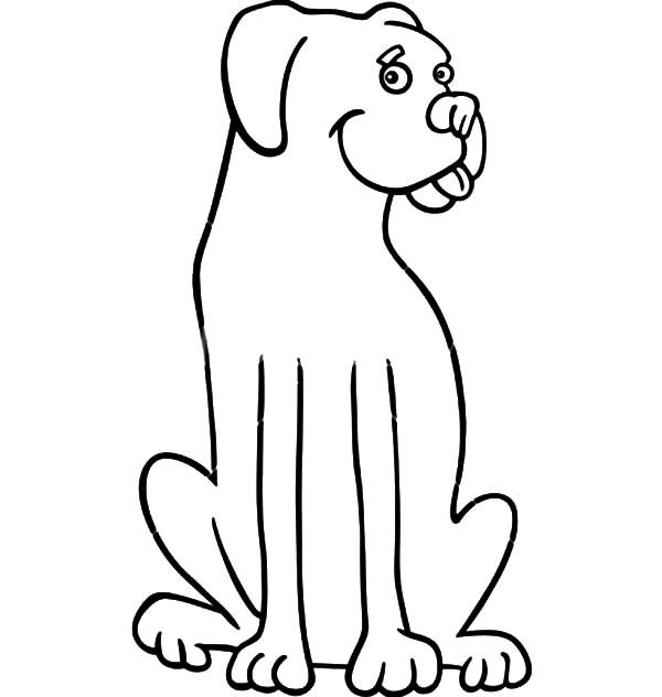 Boxer Dog, : boxer dog cartoon for coloring book