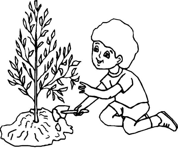 Arbor Day, : Boy Caring for Tree on Arbor Day Coloring Pages