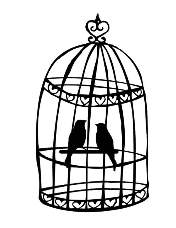 Breeding Bird in Bird Cage Coloring
