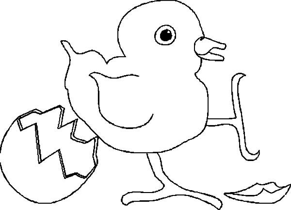 Broken Egg, : Broken Egg Little Chicken Standing on One Foot Coloring Pages