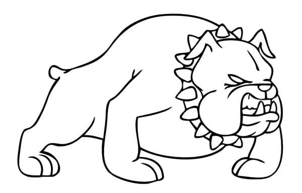 Bulldog, : Bulldog Ready to Attack Coloring Pages