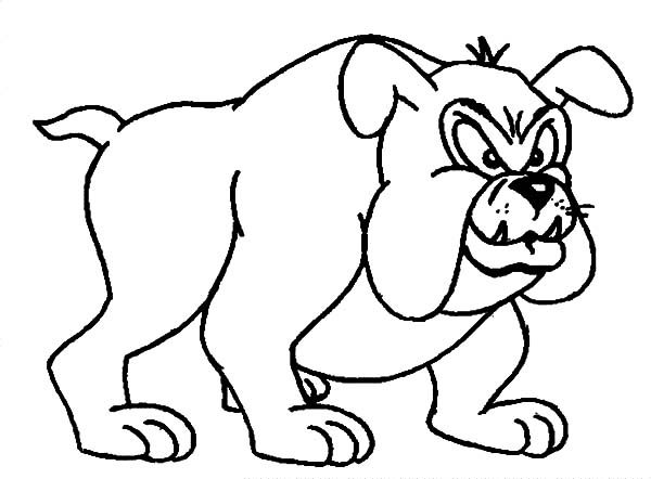 Bulldog, : Bulldog Standing Up Coloring Pages