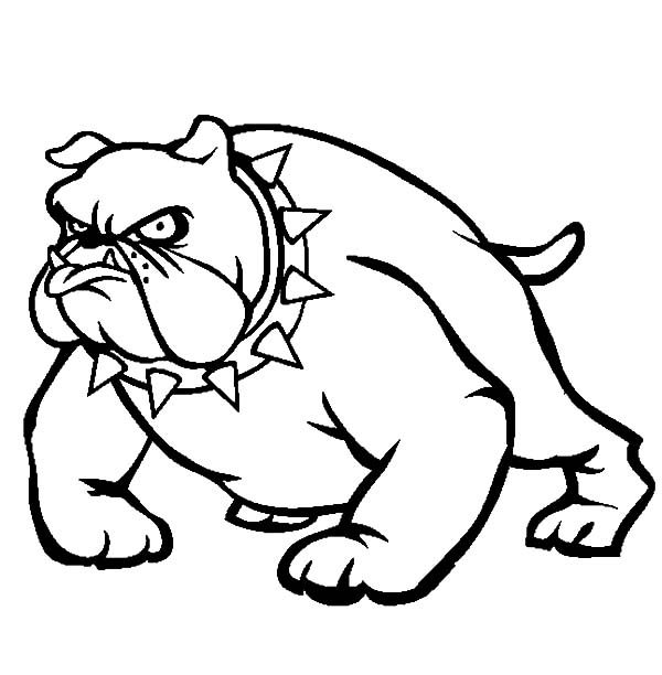 Bulldog, : Bulldog Wearing Spikey Necklace Coloring Pages