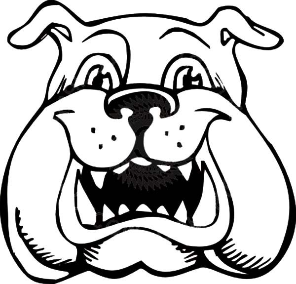 Bulldog, : Bulldog is Laughing Coloring Pages