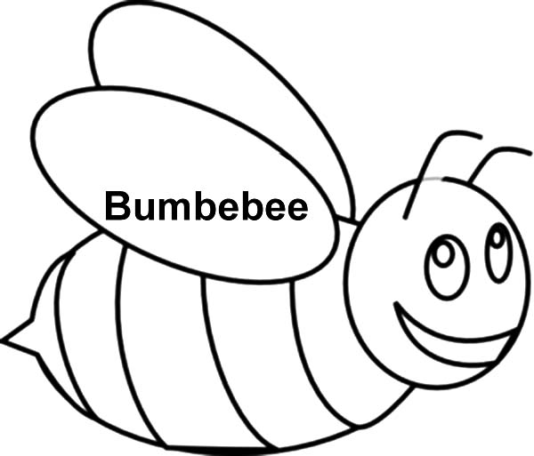 Bumble Bee Outline Coloring Pages 2