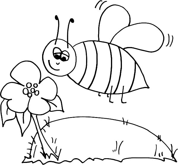 bumble bee sniffing flower coloring pages bumble bee