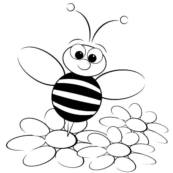 Bumble Bee, : Bumble Bee Standing on Flower Coloring Pages