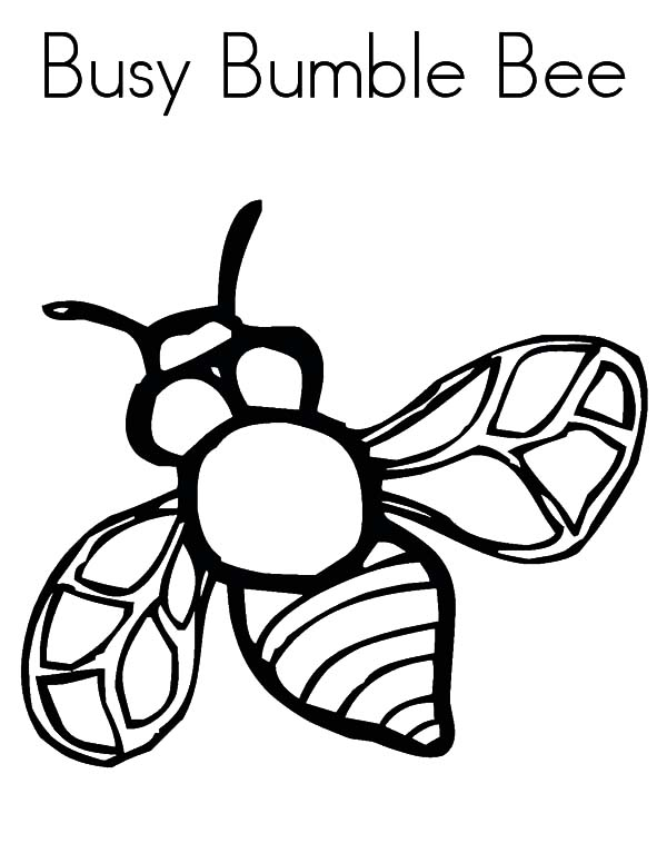 Bumble Bee coloring page  Free Printable Coloring Pages