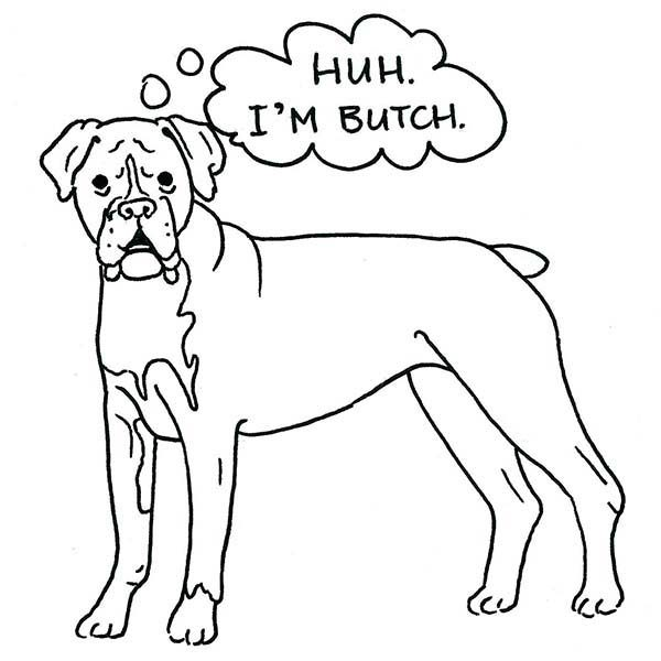 Boxer Dog, : Butch the Boxer Dog Coloring Pages