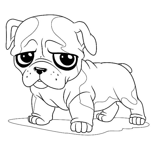 Free british bulldog coloring pages