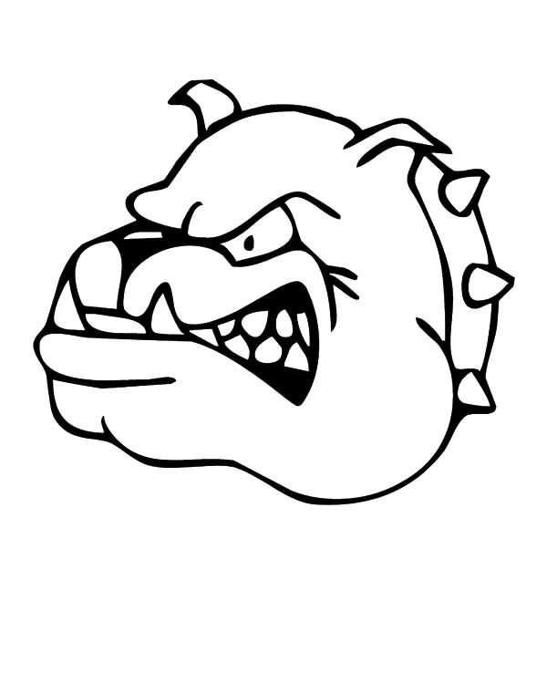 Bulldog, : Dangerous Bulldog Coloring Pages
