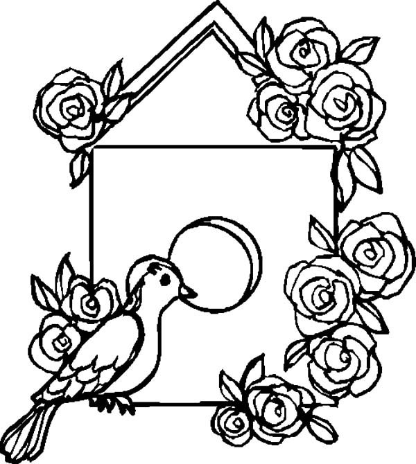 Bird House, : Decorating Bird House with Roses Coloring Pages