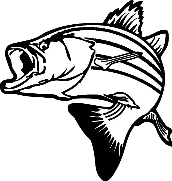 fish mouth template - free coloring pages of largemouth bass