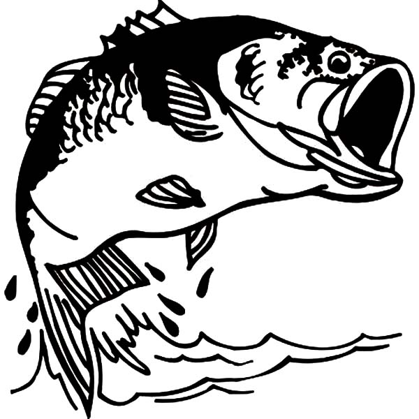 largemouth bass coloring pages - photo#10