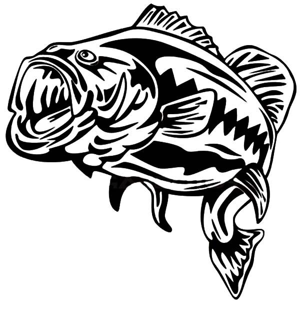 Bass Fish, : Furious Fishing Target Bass Fish Coloring Pages