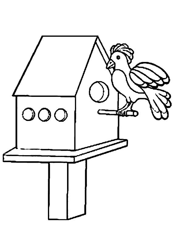 Bird House, : Get Inside Bird House Coloring Pages