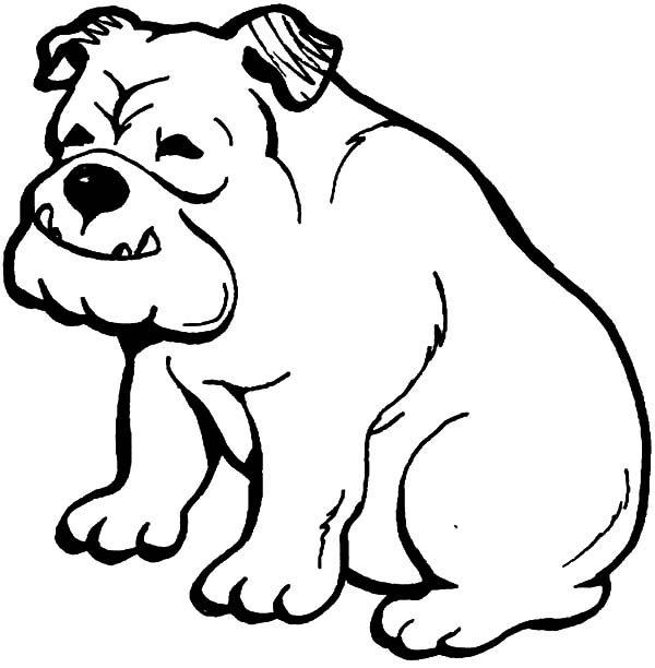 Bulldog, : Happy Bulldog Coloring Pages