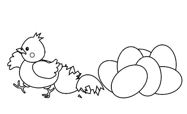 Broken Egg, : Happy Chicken Out from Broken Egg Coloring Pages