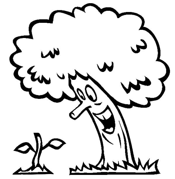 Arbor Day, : Happy Tree Seeing His Next Generation Has Grow on Arbor Day Coloring Pages