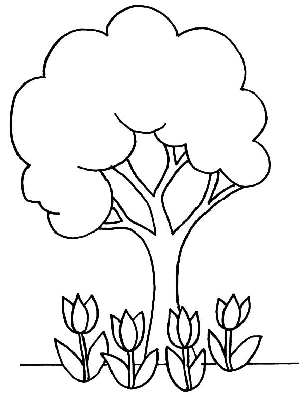 Healthy tree on arbor day coloring pages