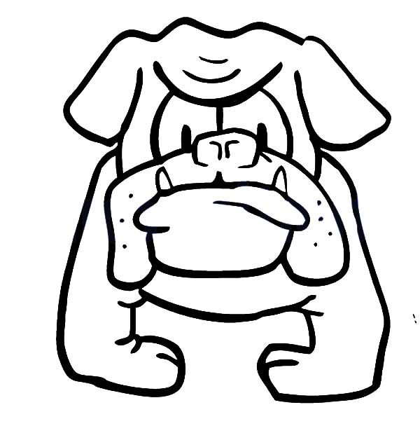 Bulldog, : House Keeper Bulldog Coloring Pages